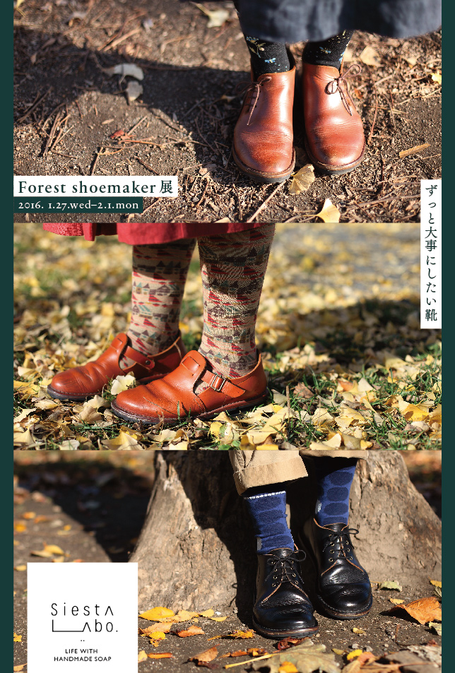 Forest shoemaker展